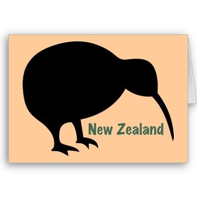 New Zealand Kiwi Bird Greeting Card by Albomfamily