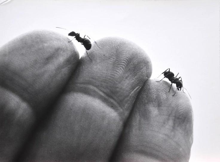 tiny Zygmunt Rytka, Kontakt, 1993