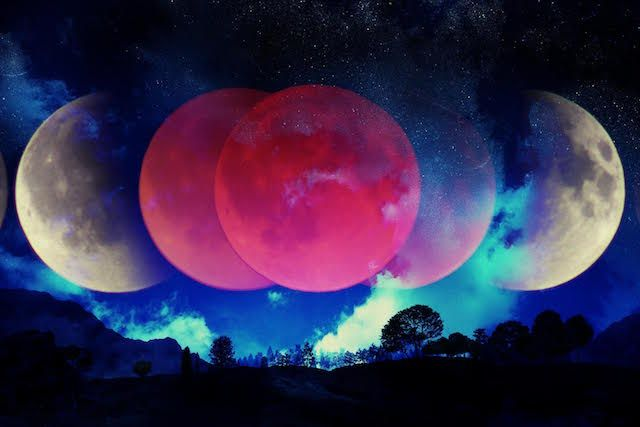 We have a FULL MOON Lunar Eclipse going on in Libra this week. (Wed 8am est) Libra is ruled by Venus so all things Venusian (beauty, love, peace and harmony) will be up for discussion. Venus expres…