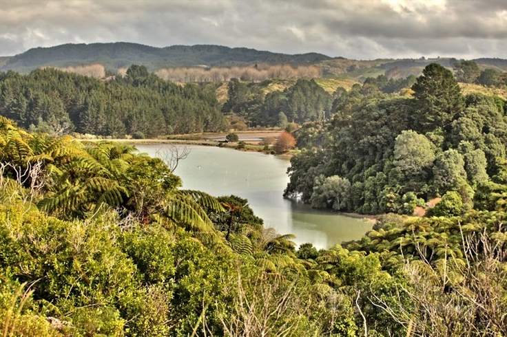 Taken from Tauwhare Pa Scenic Reserve