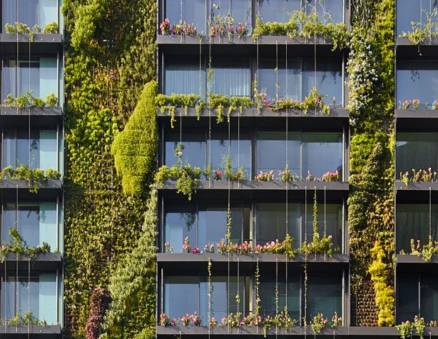 Hydroponic vertical gardens and heliostats flourish on - Building a living wall ...