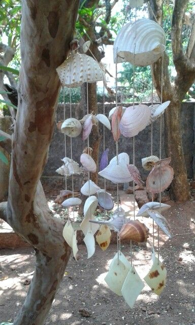 Sea shell wind chime.
