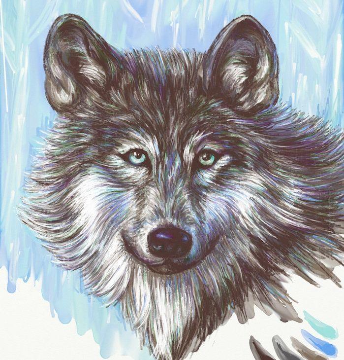 1001 Astuces D Artiste Pour Apprendre A Realiser Un Dessin De Loup Dessin De Loup Loup Dessin Comment Dessiner Un Loup