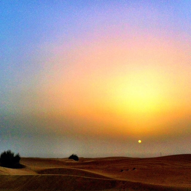 desert silence: Moments, Desert Silence