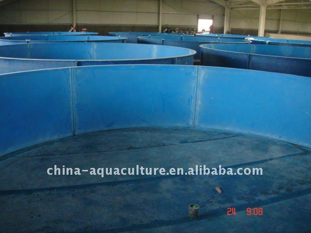 Indoor fiberglass fish tank for fish farm aquaponics for Fish farm tanks