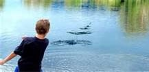 Skipping rocks /Remember this/ kinderdae/ childhood/ good old days