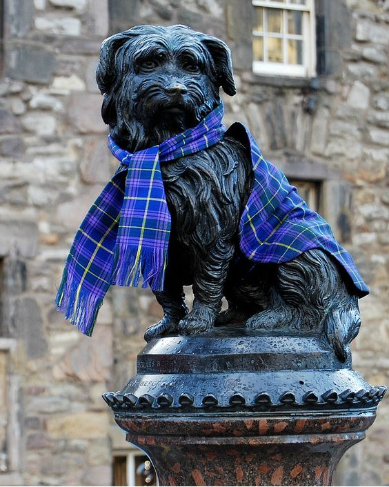 The statue of Greyfriars Bobby wearing a tartan scarf ~ Edinburgh, Scotland.