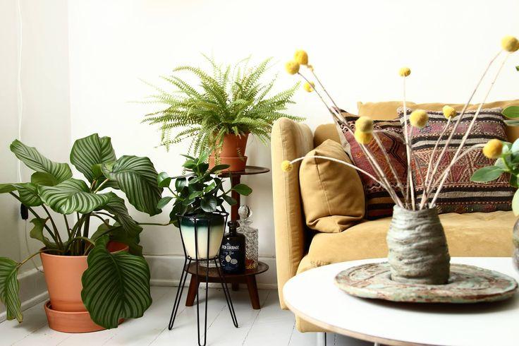 I denne lejlighed på Østerbro bor Line Stützer i et stærkt personligt mix af teakmøbler, finurlige loppefund, planter og Star Wars-figurer.