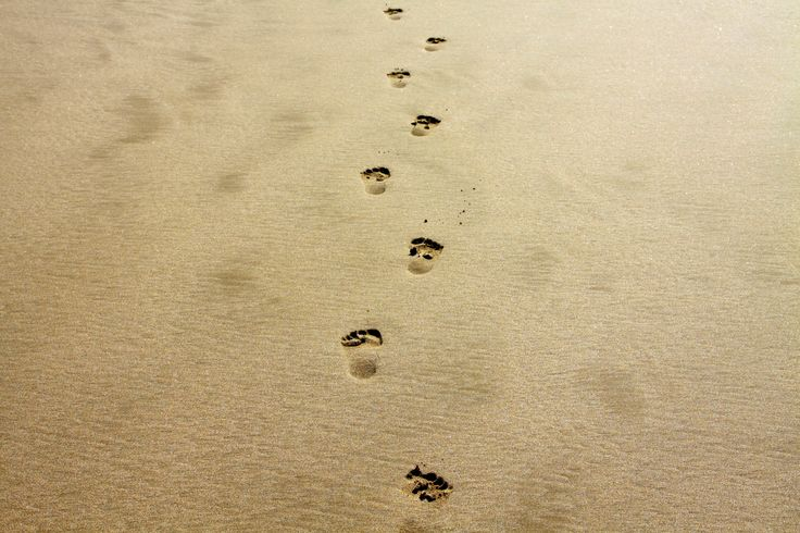 Create your own path with each step you take in this beautiful life. ~