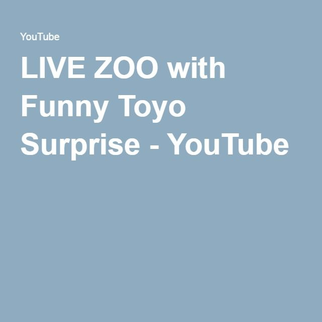 LIVE ZOO with Funny Toyo Surprise - YouTube