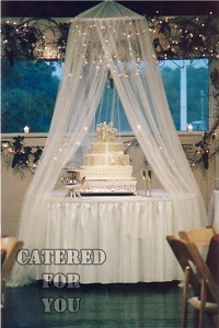 Lighted Tulle Canopy over cake  Awesome Wedding Event  Party Ideas  Wedding Wedding cake