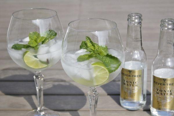 Gin Tonic Mojito