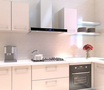 Popular for its hidden filter system, the sleek European syle range hood  features a flat, simple-to-clean stainless steel base which hides the  aluminum ...