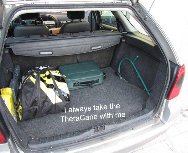 Porto sempre con me il TheraCane