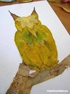 Owl -  Collage with leaves