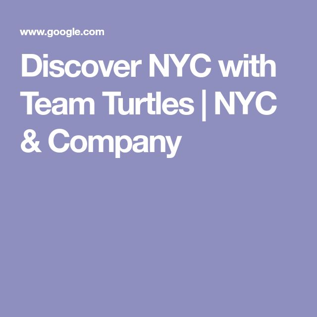 Discover NYC with Team Turtles | NYC & Company