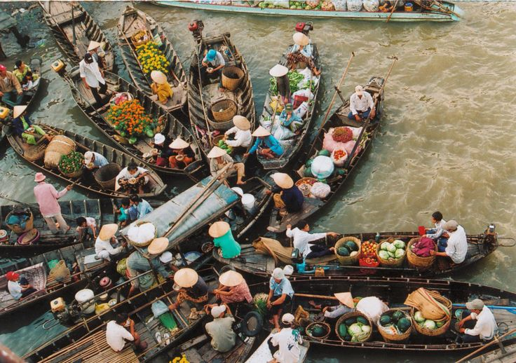 Highlight Tours - When and where to visit Vietnam? Many who visit Vietnam say it's one of the most colourful countries in all of Southeast Asia. And they might argue that this is due, in part, to the distinct differences in culture and climate that exist between the north and the south of this spectacular nation...