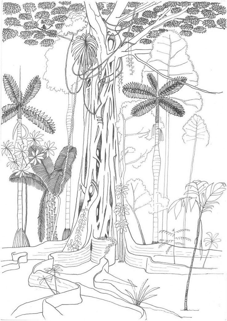 CinéCoulisses.fr   [Critique] Il était une forêt