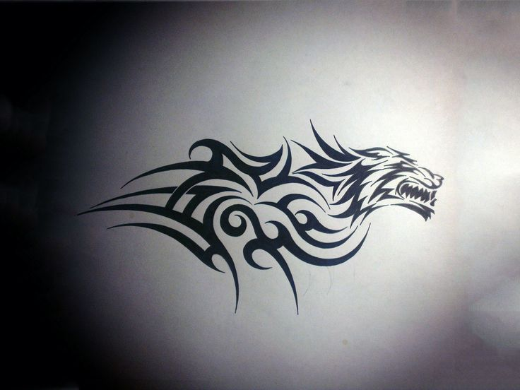 Tiger Tribal Tattoo Design wallpaper