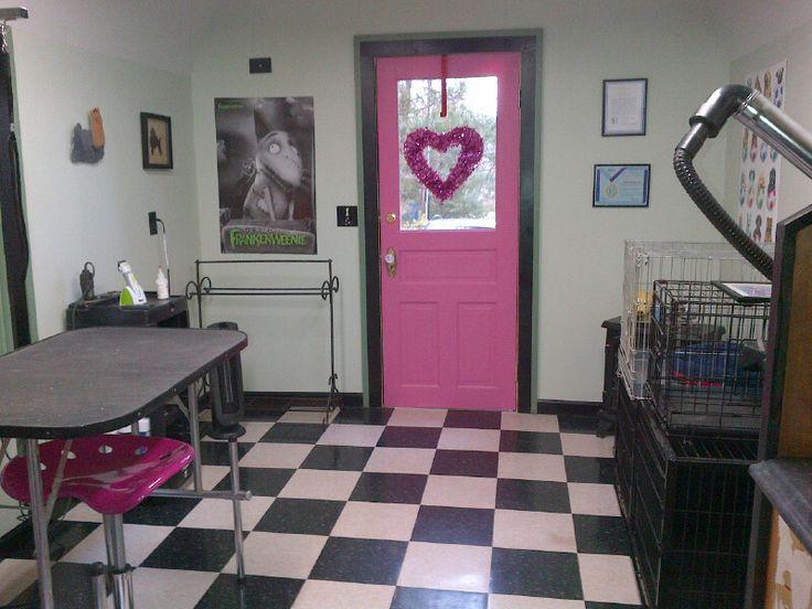 Grooming Shop Floor Plans: Best 25+ Dog Grooming Salons Ideas On Pinterest
