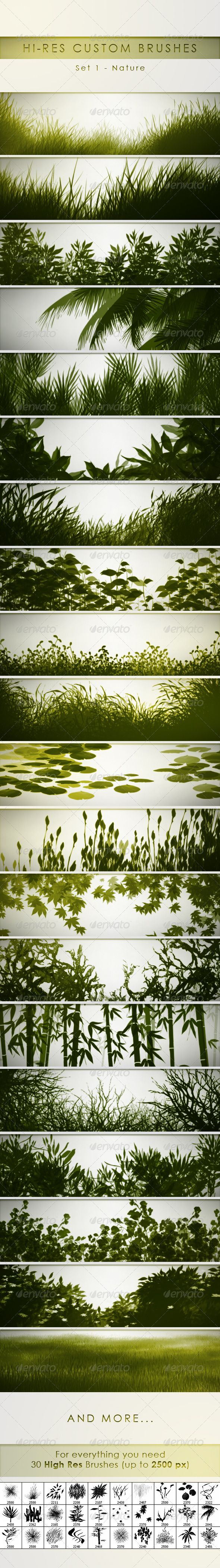 30 Hi-Res Custom Brushes - Nature  #GraphicRiver         30 Hi-Res Custom Brushes – Nature is a Set of professional Photoshop brushes perfect for graphic designers and illustrators. All of them have a resolution up to 2500 px., perfect for high resolution files. And they're configurated to work with the pen pressure