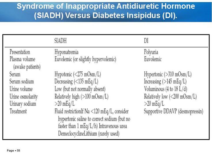 testosterone biology