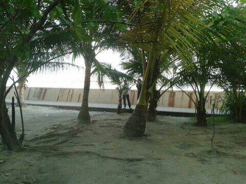 Edge of Artificial Beach