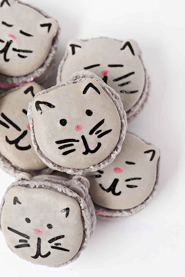How To Make Kitten Macarons Sprinkles For Breakfast Recipe Macarons Diy Cat Food Cat Party