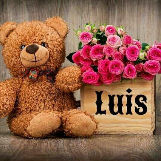 Osito Luis