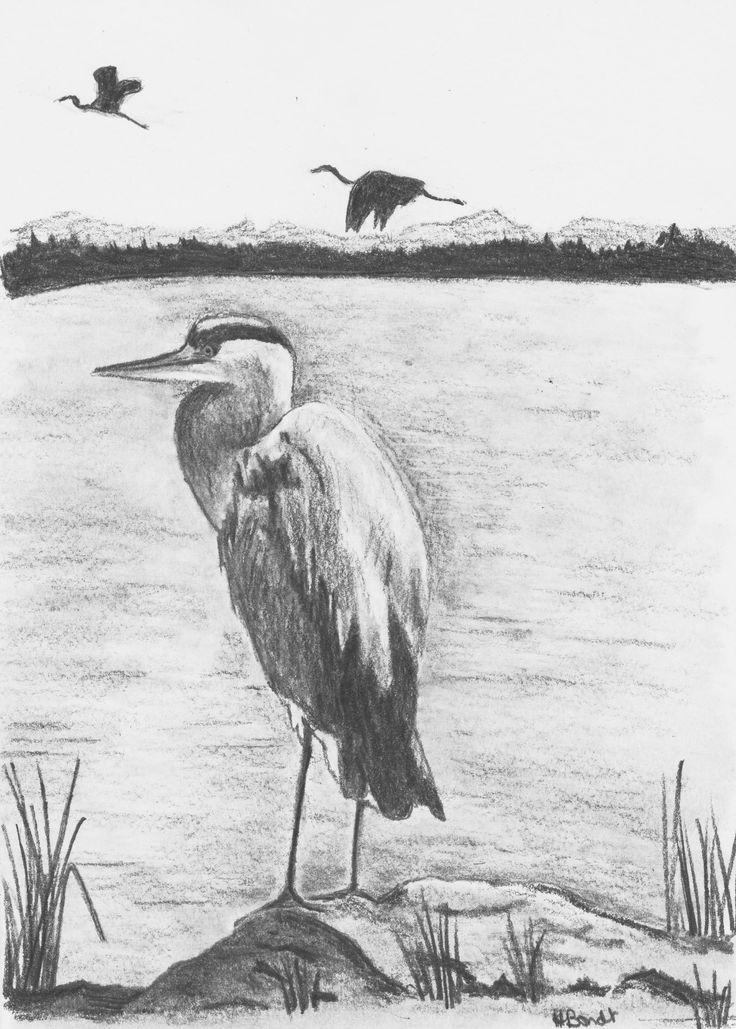Great Blue Heron by Hester Bondt