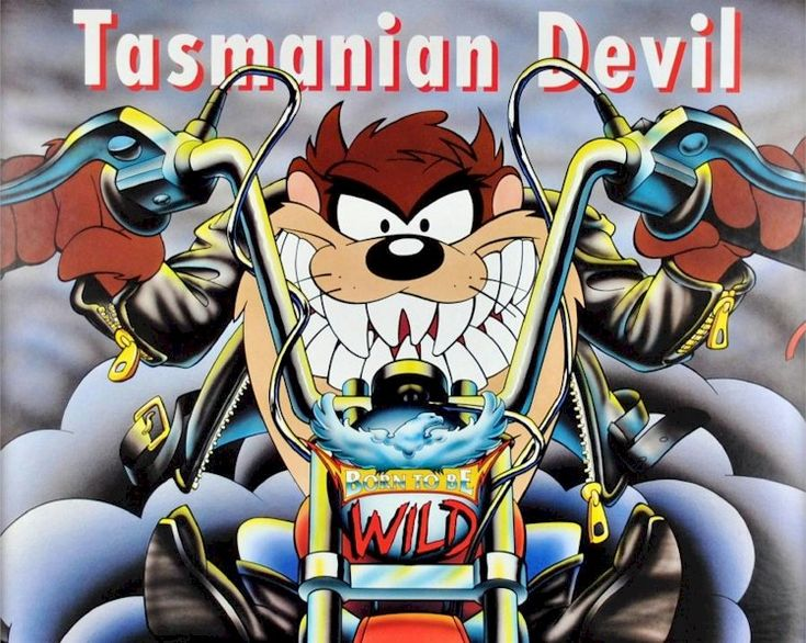 17 best images about taz on pinterest cartoon satan and - Tasmanian devil pictures cartoon ...