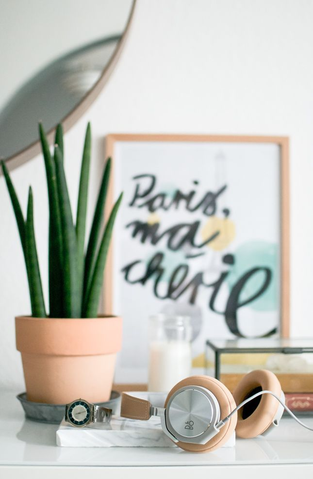 Un nom qui nous fait voyager en ce dimanche un peu gris :) La sansevieria cylindrica est une plante grasse originaire d'Afrique, avec ses feuilles hautes et d'un vert intense elle donnera un brin de verticalité à vos espaces. Robuste, cette plante sera parfaite dans un petit pot étroit dans un coin de la maison.