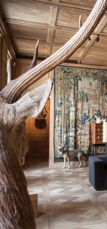 Musée de la chasse et de la nature, Paris (IIIe)