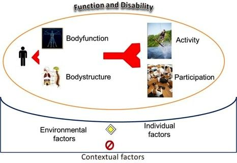 international classification of functioning - Google Search