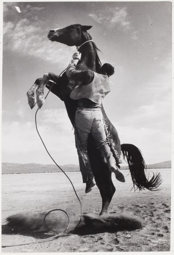 Stuntman with Mustang on the set of The Misfits, 1960 | Ernst Haas