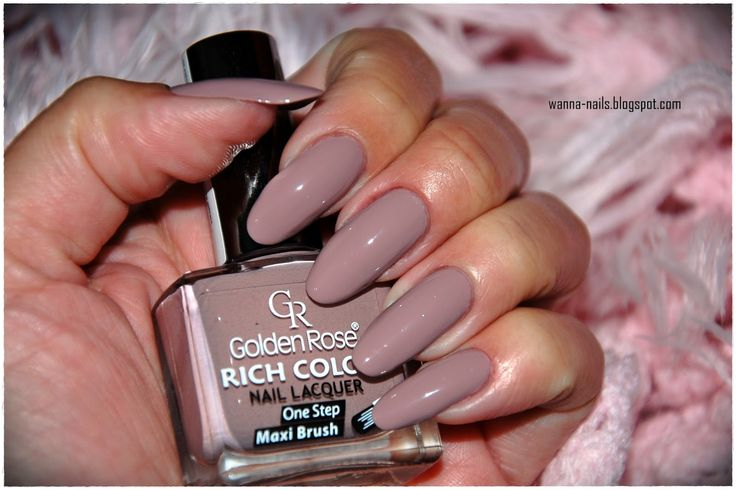 Golden Rose Rich Color #05