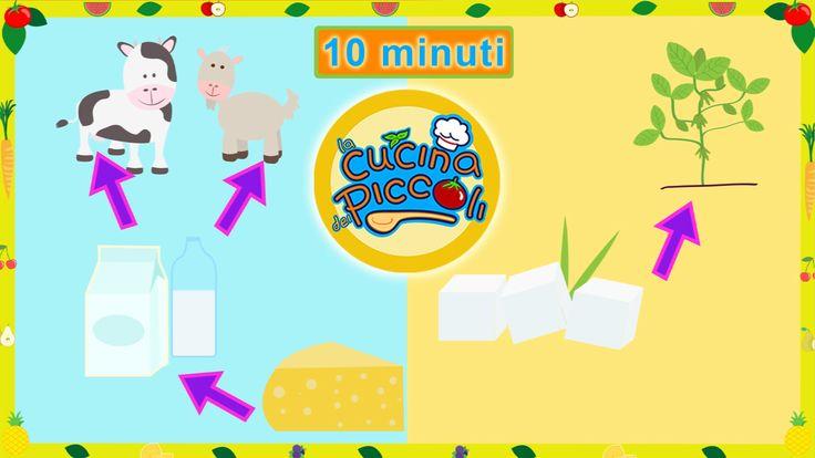 Margherita il latte e i formaggi - compilation di cartoni animati per bambini i cartoni animati educativi per bambini sono un'ottimo modo per intrattenerli in modo sano! Il latte è l'alimento dei bambini! Che sia animale o vegetale i bambini ne sono grandi bevitori per eccelle #cartonianimati #bambini #cibo #latte