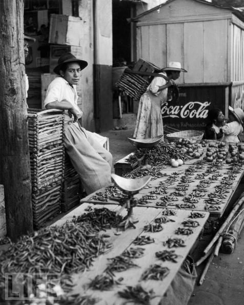 Chilli Peppers for Sale, Circa 1955, Please sign this petition, https://www.youtube.com/watch?v=XClI8FGMVa4