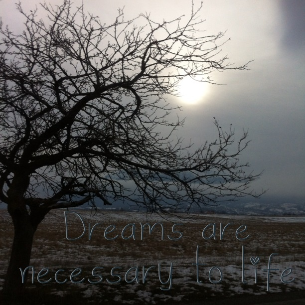 Dreams.....  #Bran #Brasov  #Romania