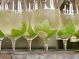 Venetian Wine Spritzer Recipe:  -4 ounces chilled white wine  -4 ounces carbonated flavored water, chilled  - Fruit garnish, your choice