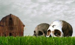 How Body Farms Work.  Wow - this article was soooo interesting!  Didn't even know there was a website describing how stuff works!  howstuffworks.com