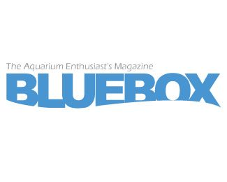 "Magazine title for aquarium enthusiasts. I've been told it looks like ""Finding Nemo""..."