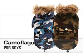 Dog Fashion for Boys | LA Pug Clothes | Californian Styled Pug Dog Clothing