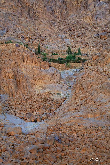 Near Mount Sinai, Egypt