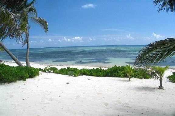 Coconut Beach Villa In Rum Point