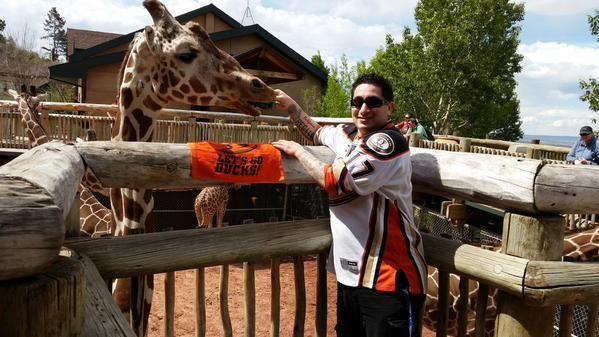 @Rgonzon444 (Twitter) #StayCoolThisSummer Contest Finalist! #Ducks #Hockey #Sunglasses #Giraffe