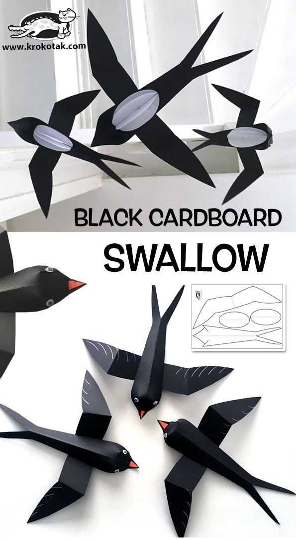 Black+Cardboard+Swallow