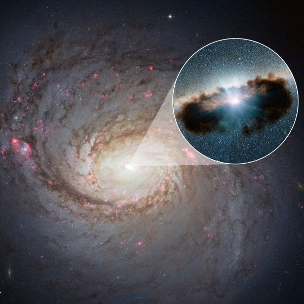 The NASA/ESA Hubble Space Telescope has captured this ...