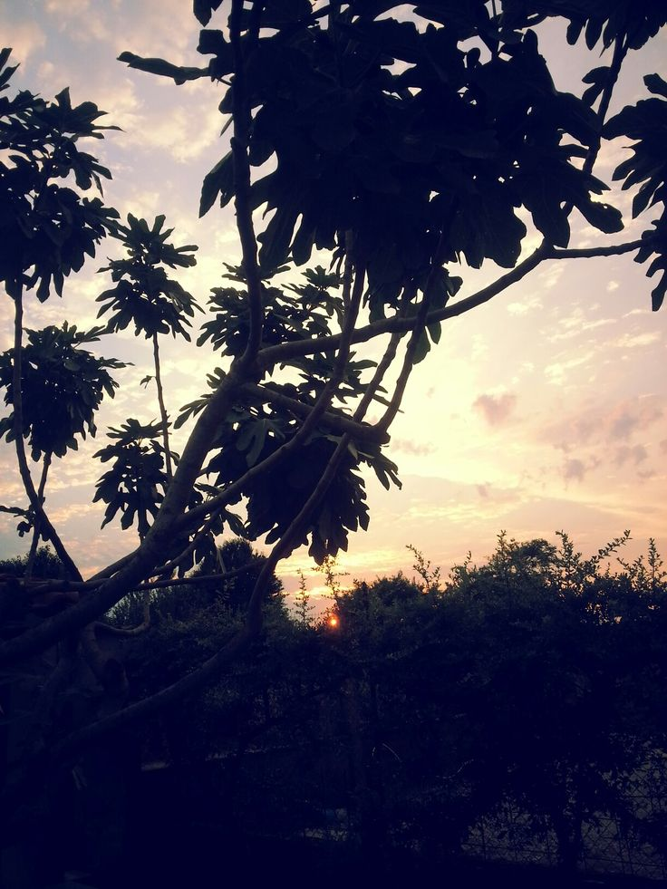 Sunset. Beautiful. Tramonto. Malinconico. Photo by me, AngelaRizzo.