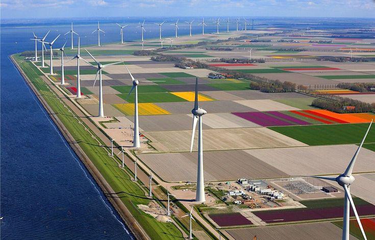 Windpark Noordoostpolder in the Netherlands - tulip fields and modern day…